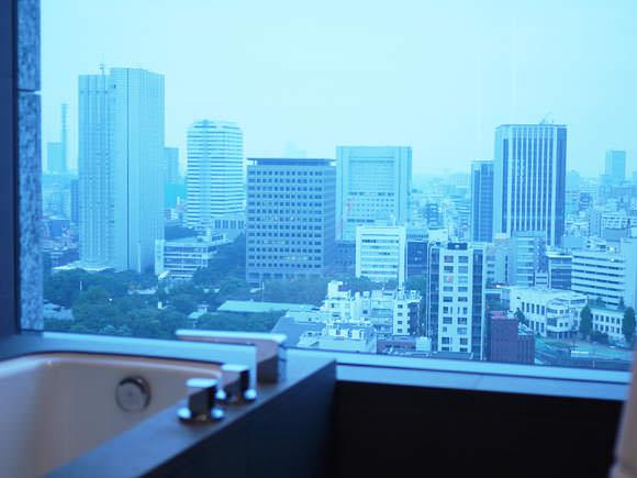 ザ・キャピトルホテル東急バスビュー画像1