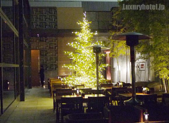 オークドアの前にあるツリー