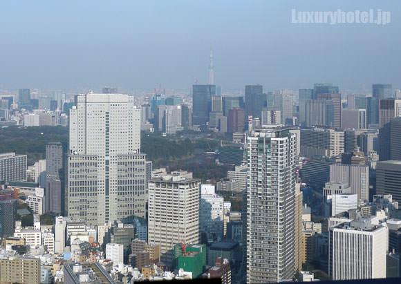 ザ・リッツ・カールトン東京 ロビーラウンジからの眺め