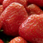 20130104-strawberryfair-hotel.jpg