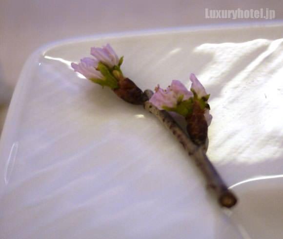 お皿の四隅に桜の花びら