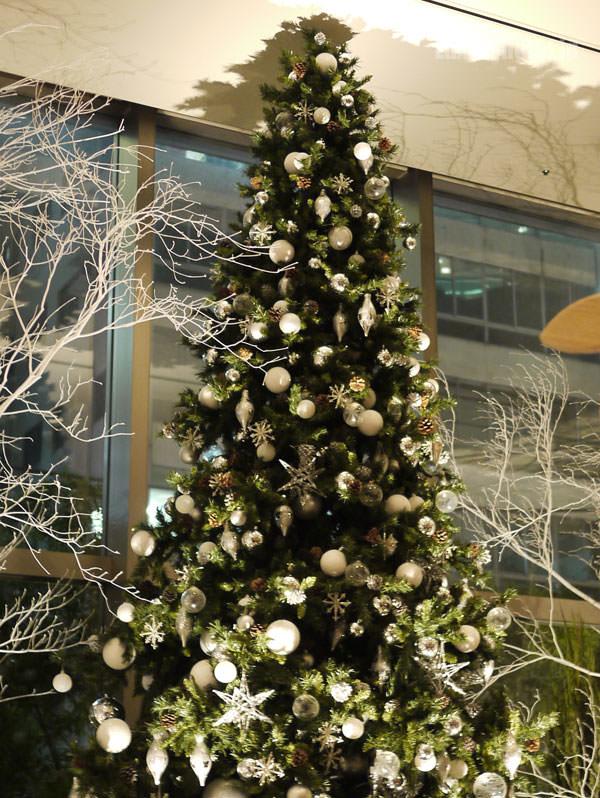普通のクリスマスツリー