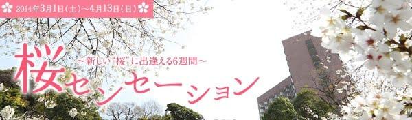 ホテル椿山荘東京 桜センセーション
