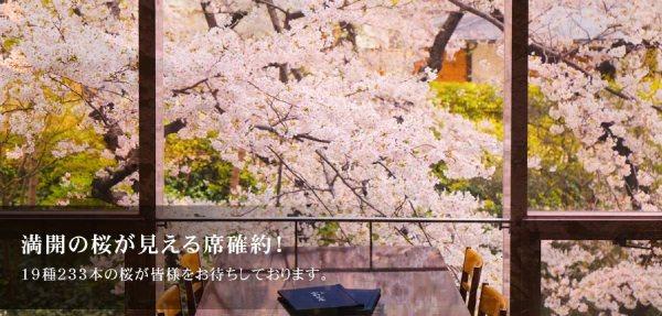 プリンスホテル 桜まつり