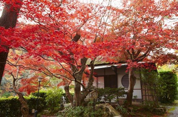 ラグジュアリーコレクションホテル京都 施設内画像
