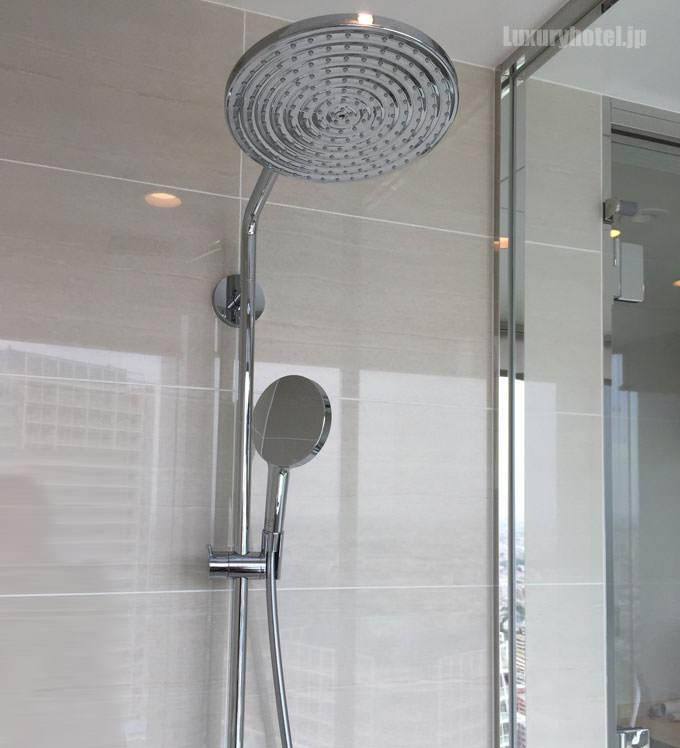 ハンドシャワーとレインシャワーもある