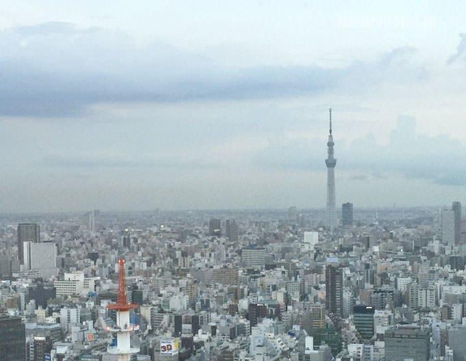 ライブラリー同様、窓からは東京スカイツリーが見える