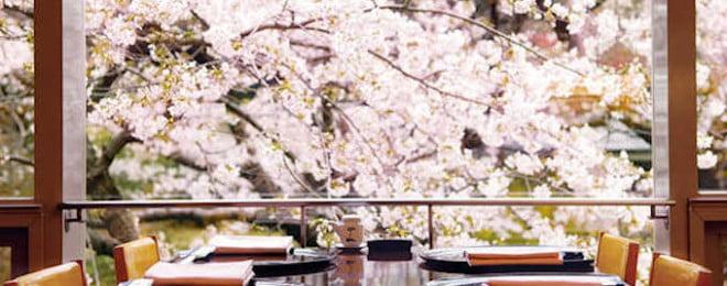 桜の見えるホテル特集 タイトル画像
