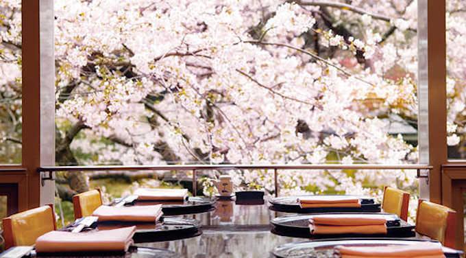 桜を見られる高級ホテル特集 タイトル画像