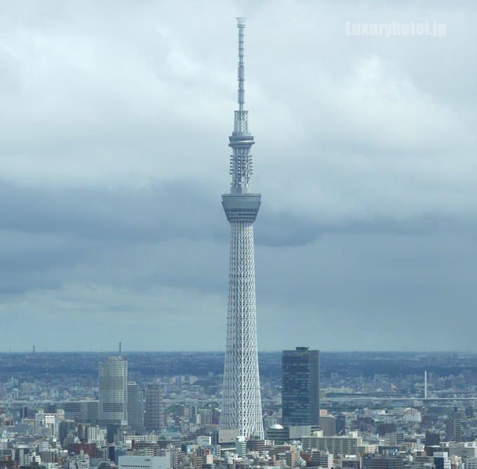 東京スカイツリーが見える