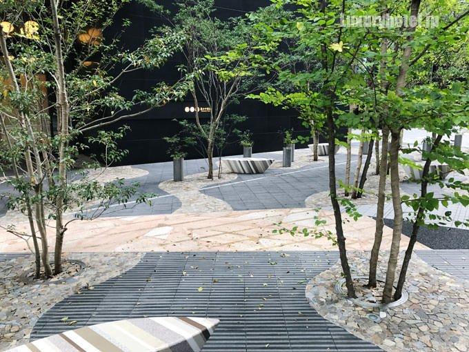 入り口前の緑は川が流れているようなデザイン