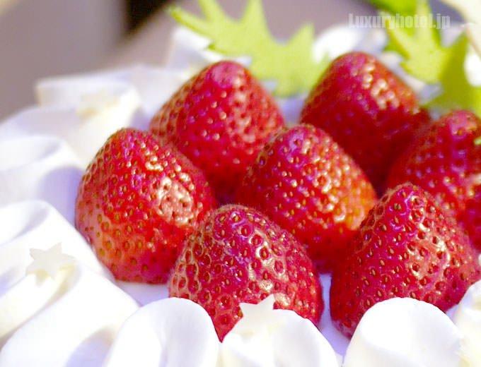 苺のショートケーキ とちおとめの拡大画像