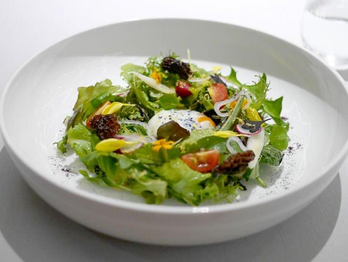 セントラム サラダ 15種類の野菜、網笠茸、63℃で調理した丹波産玉子