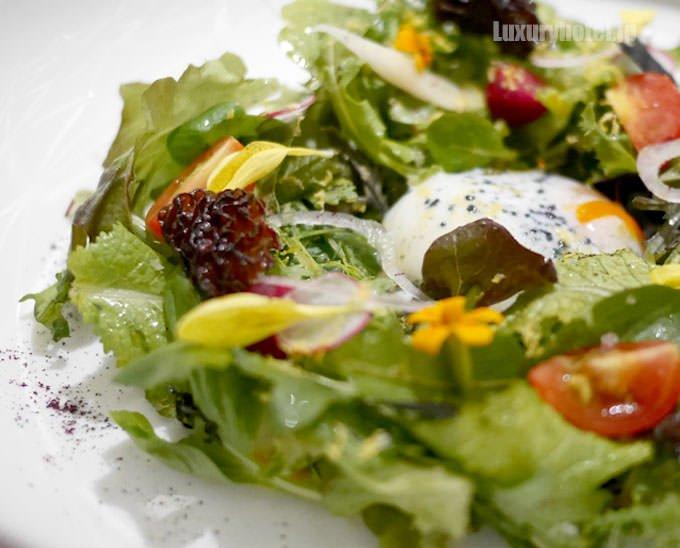 セントラム サラダ 15種類の野菜、網笠茸、63℃で調理した丹波産玉子 拡大画像