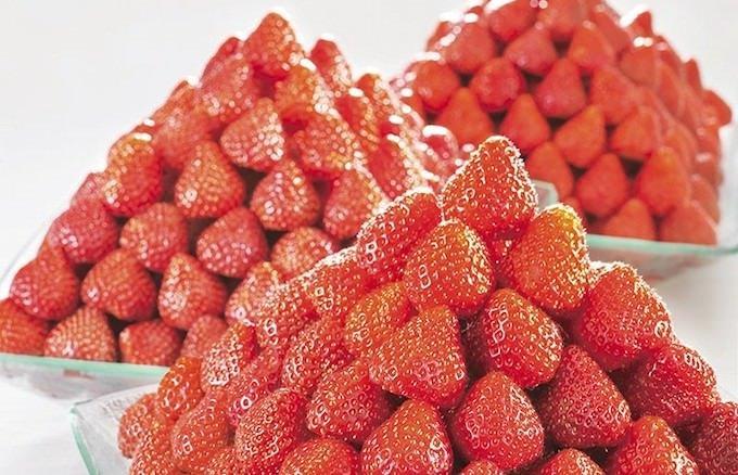 『≪苺づくし≫スイーツバイキング』3種のフレッシュ苺 食べ比べ